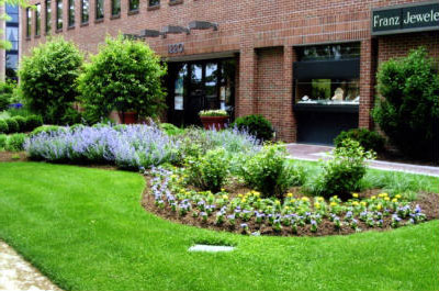 Lawn Care & Landscaping Maintenance